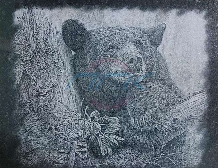 гравировка медведь
