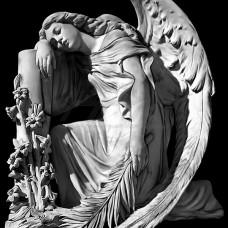 Картинка Ангел № 1