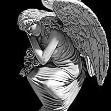 Ангел №24