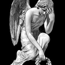 Ангел №50