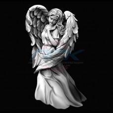 Ангел №53