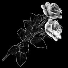 Цветок №5
