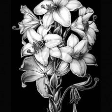 Цветок №26