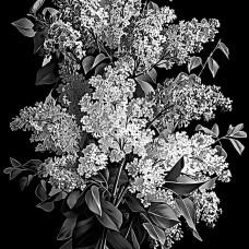 Цветок №28
