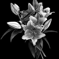 Цветок №31