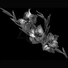 Цветок №43
