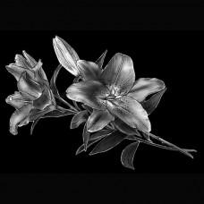 Цветок №45