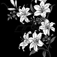 Цветок №53