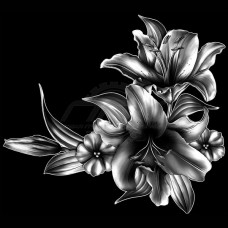 Цветок №54