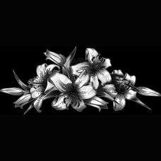 Цветок №62