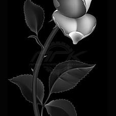 Цветок №71