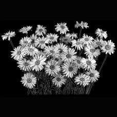 Цветок №80