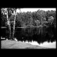 Пейзаж №11