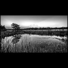Пейзаж №21