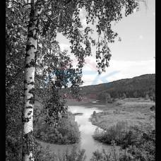 Пейзаж №24